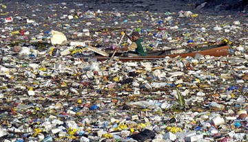 """Eastern Garbage Patch"" (EGP)"